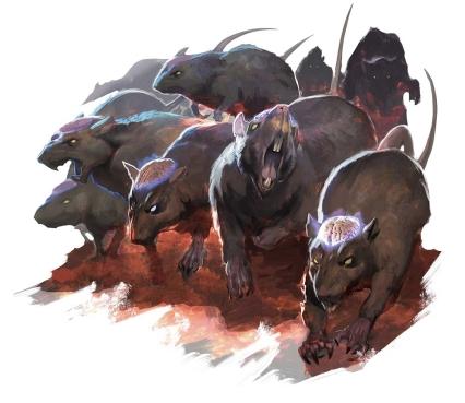Cranium_rats-5e